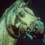 20世紀最大の発見 始皇帝が遺した兵馬俑