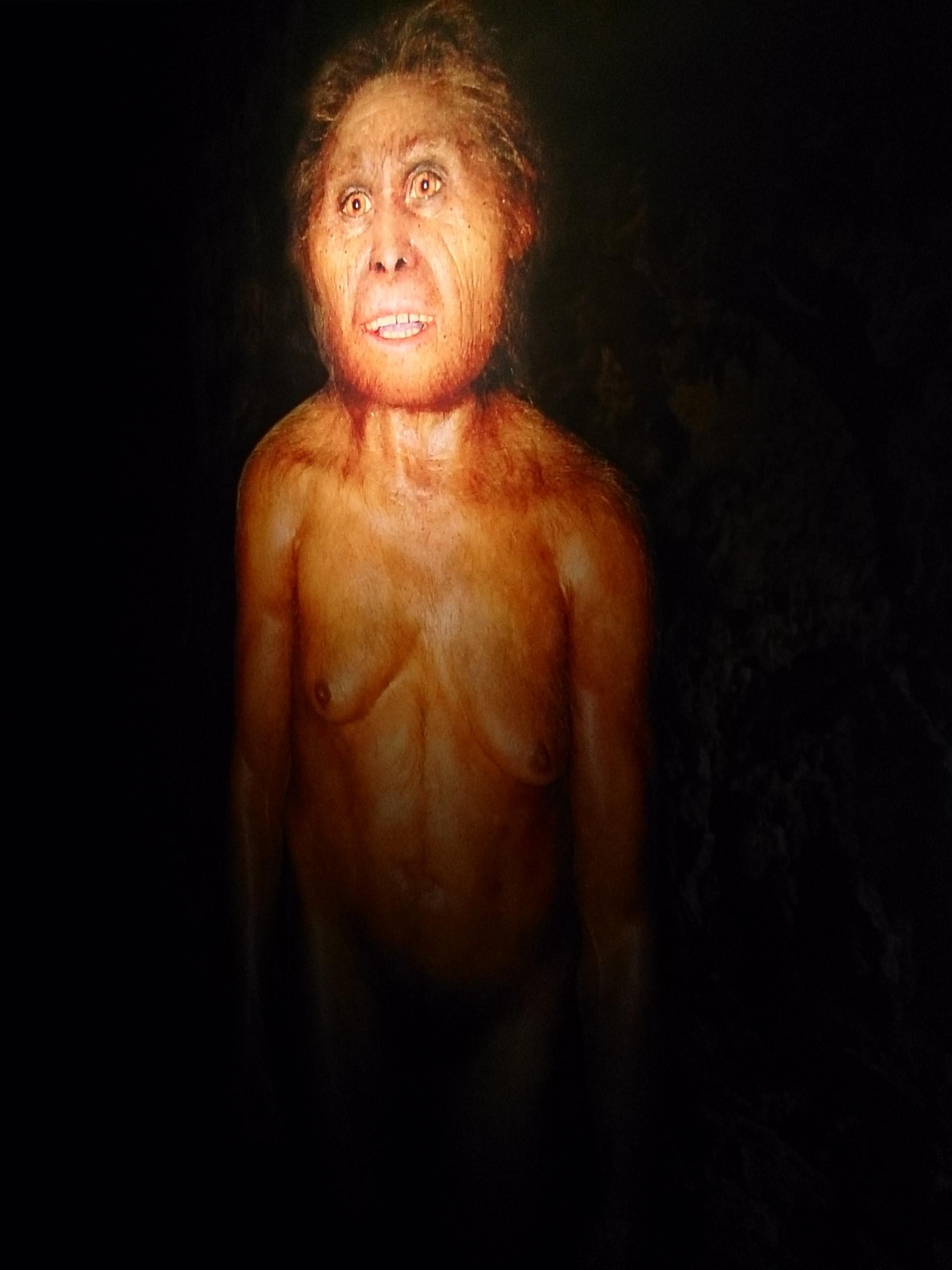 ジャワ原人の故郷サンギランで人間の歴史を学ぶ