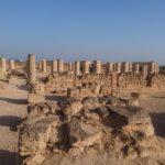 サラーラのアルバリード遺跡と乳香博物館