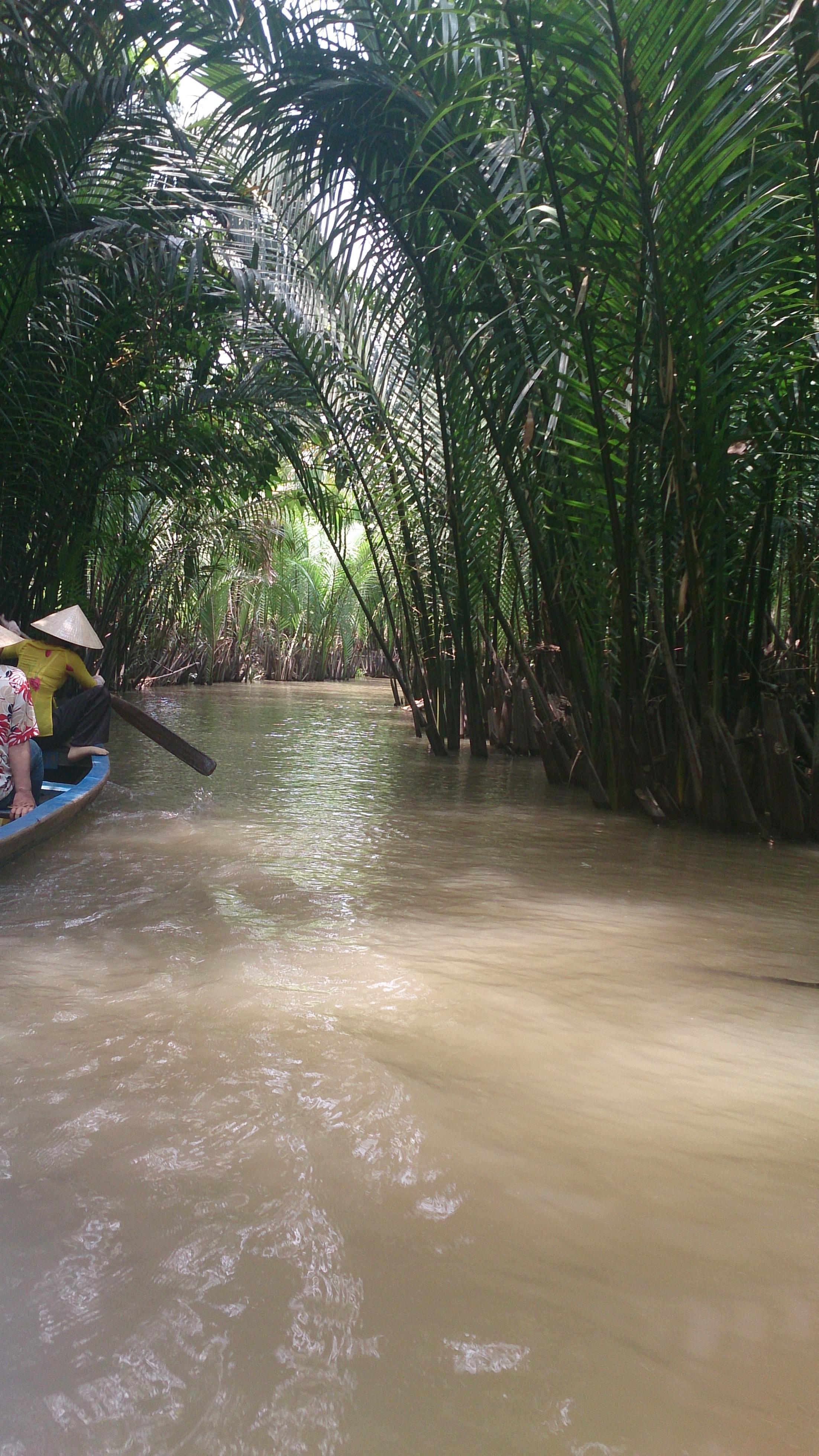 ミトーのメコン川ボートツアーで南国を感じる