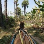 古都インワの町の見所を馬車で巡る