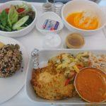 マレーシア航空 B737-800 ビジネスクラス搭乗記 シンガポール⇒クアラルンプール⇒香港