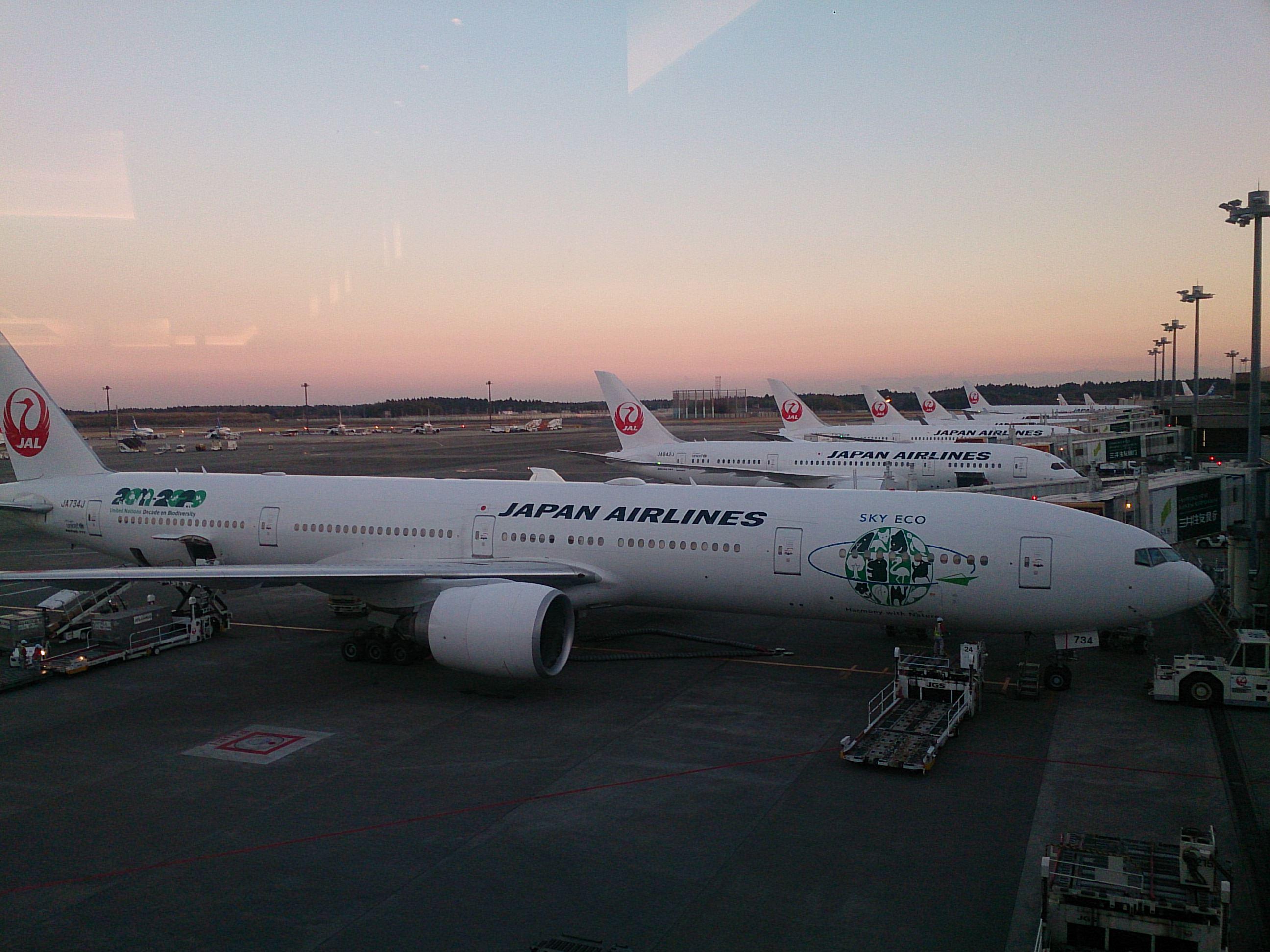 JL759 成田⇒ホーチミン 787-8エコノミー 搭乗記