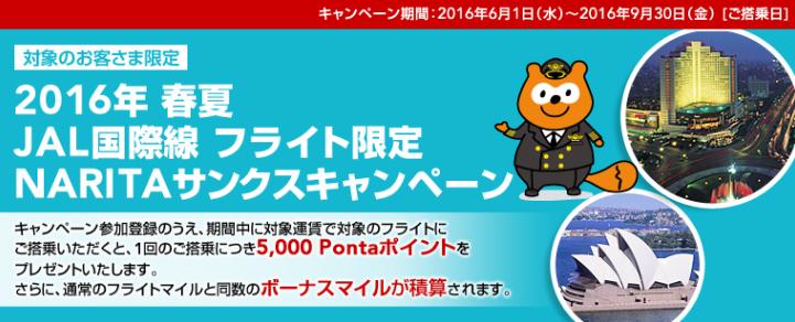 2016年 春夏JAL国際線フライト限定 NARITAサンクスキャンペーン